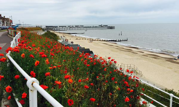 Southwold Poppies